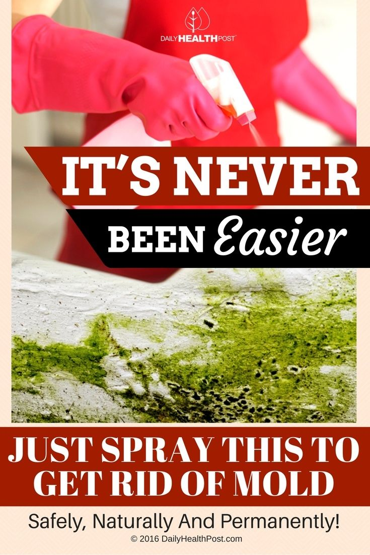 It's Never Been Easier! Just Spray This To Get Rid of Mold Safely, Naturally And Permanently! via @dailyhealthpost