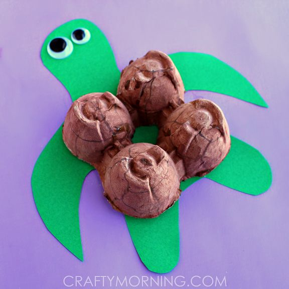 egg-carton-turtle-craft-for-kids-to-make-