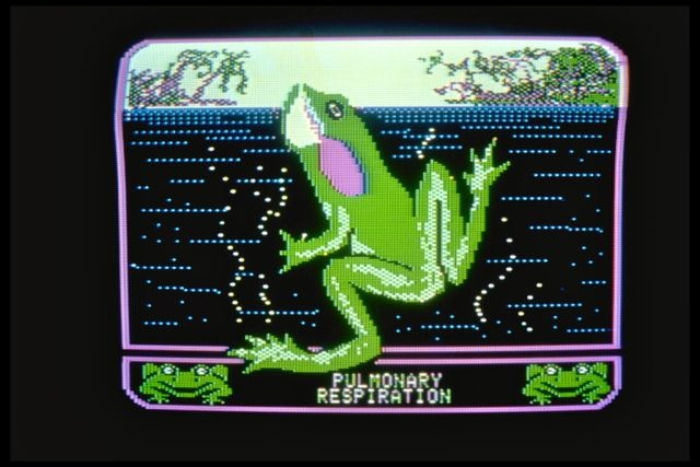 Operation Frog (1984): One frame from an animation demonstrating pulmonary function in frogs.