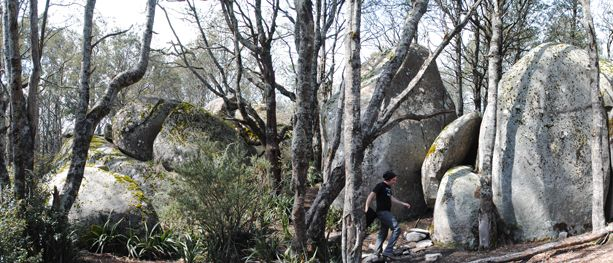 For a taste of the Australian Alpine Walking Track's beauty, this short walk to Mushroom Rocks is definitely worth a visit...