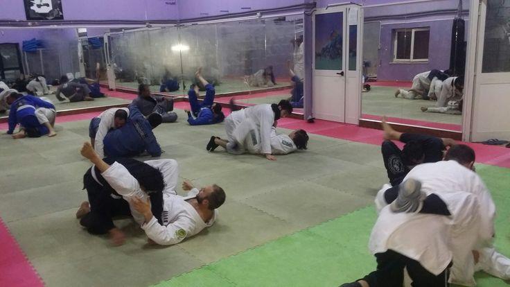 Brazilian jiu jitsu - asd hanuman