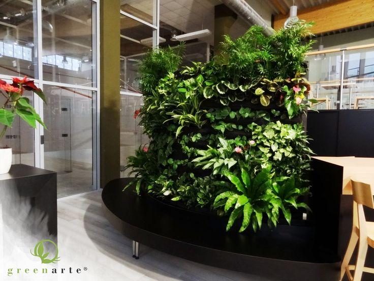 Nietypowe zielone ściany w Centrum Squasha REDECO - Greenarte®