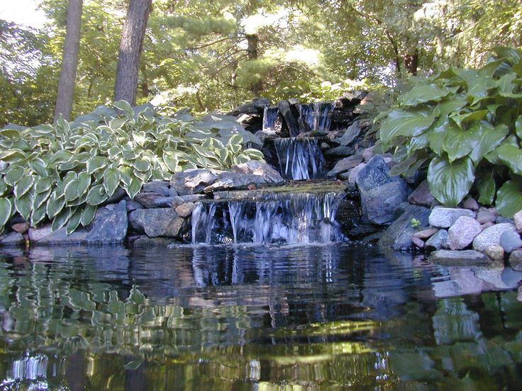 Water Garden Design 87 best pond images on pinterest | backyard ponds, fish ponds and