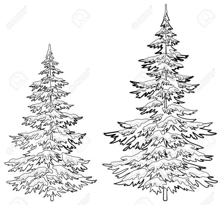 vector christmas trees under snow on a white background contours buy this stock vector on shutterstock find other images