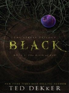 Black by Ted Dekker, Book 1 of The Circle Trilogy, Christian fantasy/supernatural thriller.
