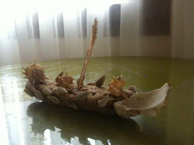 Deniz kabuklarından Viking gemisine..,