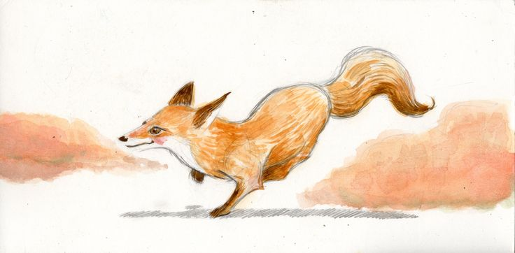 """Fox"" watercolour and pencil  Sonia Giampaolo"