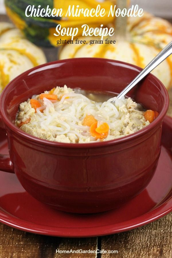 Chicken Miracle Noodle Soup Recipe- Gluten free- low carb- Grain free~ Yummy!