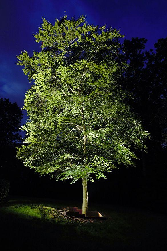 Marras Illumination | Landscape Lighting Design