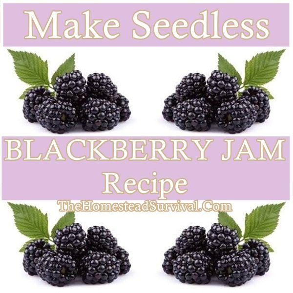 Make Seedless BLACKBERRY JAM Recipe Homesteading  - The Homestead Survival .Com