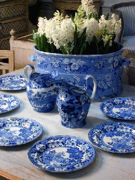 Beautiful blue transferware with white hyacinth