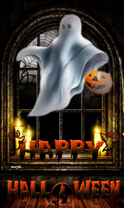 Download 480x800 «spirit halloween» Cell Phone Wallpaper. Category: Holidays