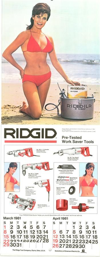 One of Raquel Welch's two RIDGID calendar appearances!: Sex Sell, Racquel Welch, Ridgid Calendar, Google Search, Pind Stuff, Raquel Welch, Calendar Appearances, Magazines Covers, Skin