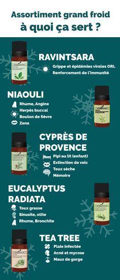 Tout ce que vous avez toujours voulu savoir sur les huiles essentielles antibactériennes, antivirales et immunostimulantes. Parfait contre les microbes de l'hiver !