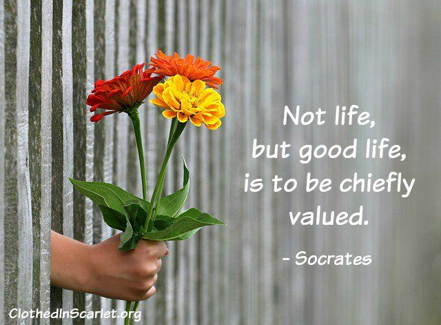essays socrates good life But here we see the life of socrates testifies to the truth of his teachings money is a conditional good, only good when it is in the hands of a wise person.