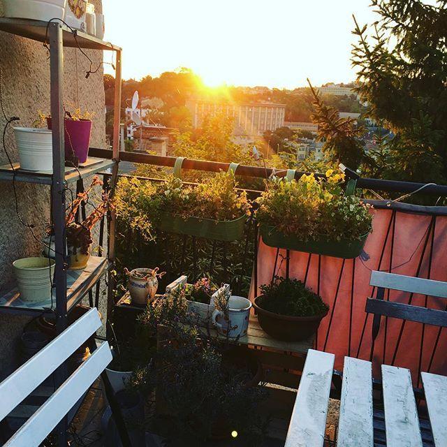 City with a view #budapest #budahillsbudapest #travelbudapest #traveltheworld #sunrise