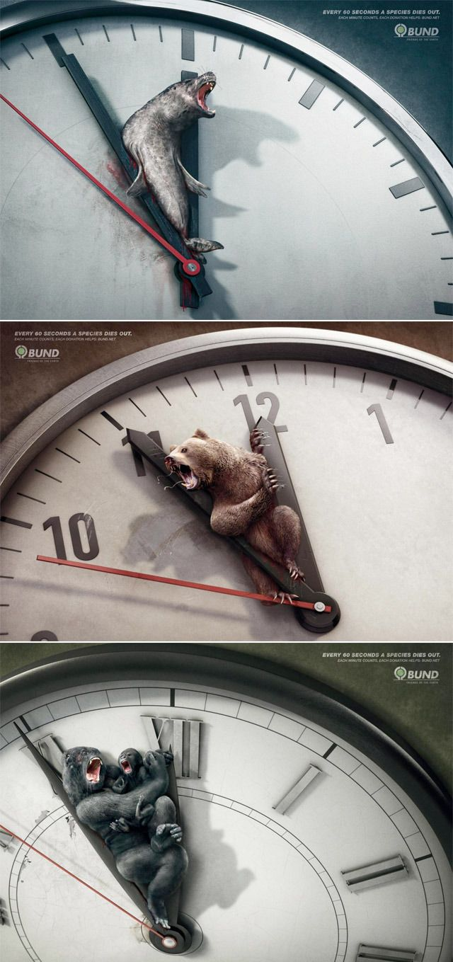 Creative campaign ads from BUND Every 60 seconds a species ...