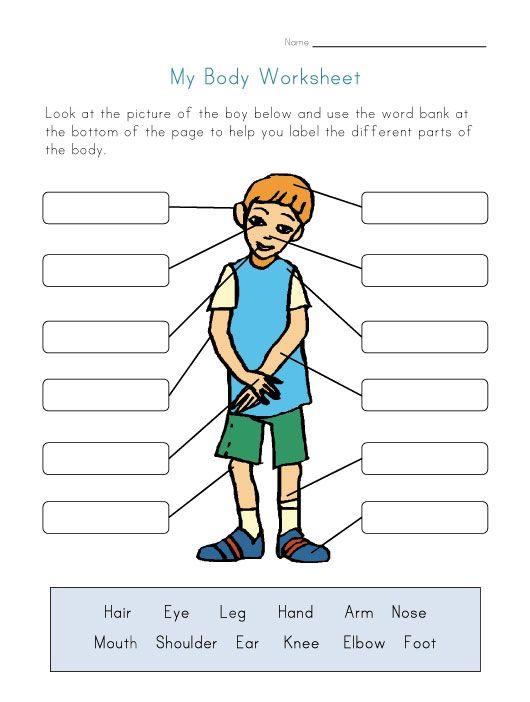 body parts worksheet