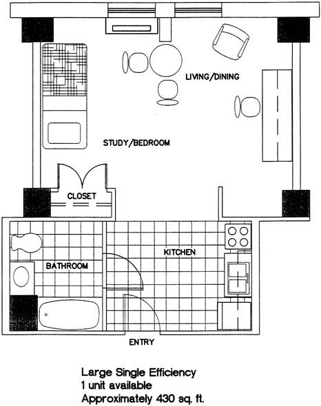 large single efficiency Floor plans, Room dimensions