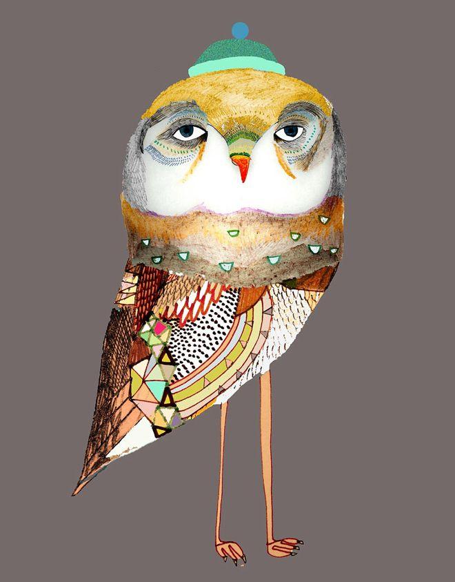 Birdlife Illustrations   Ashley Percival inspiration