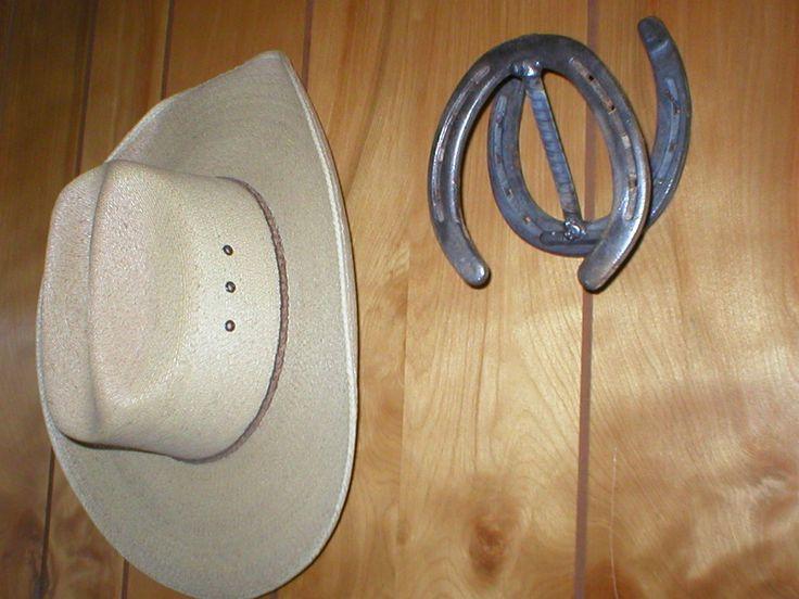 85 best horseshoes images on pinterest horseshoe art for Horseshoe project ideas