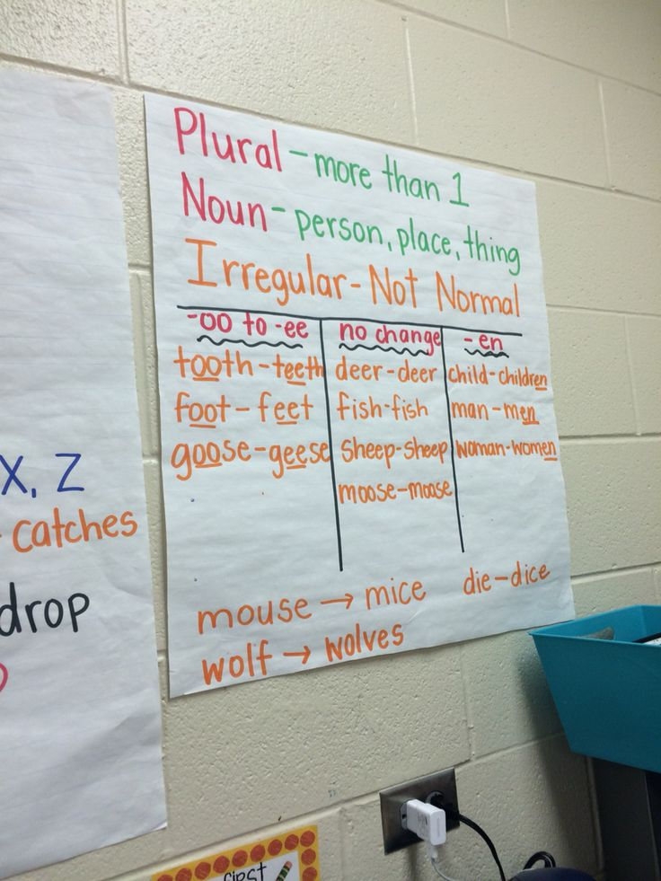 Irregular Plural Nouns                                                                                                                                                                                 More