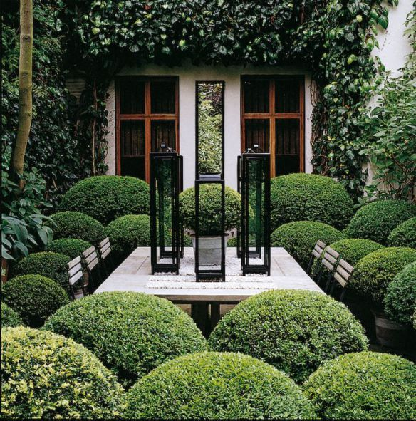 Clipped Boxwood hugs an outdoor dining room.