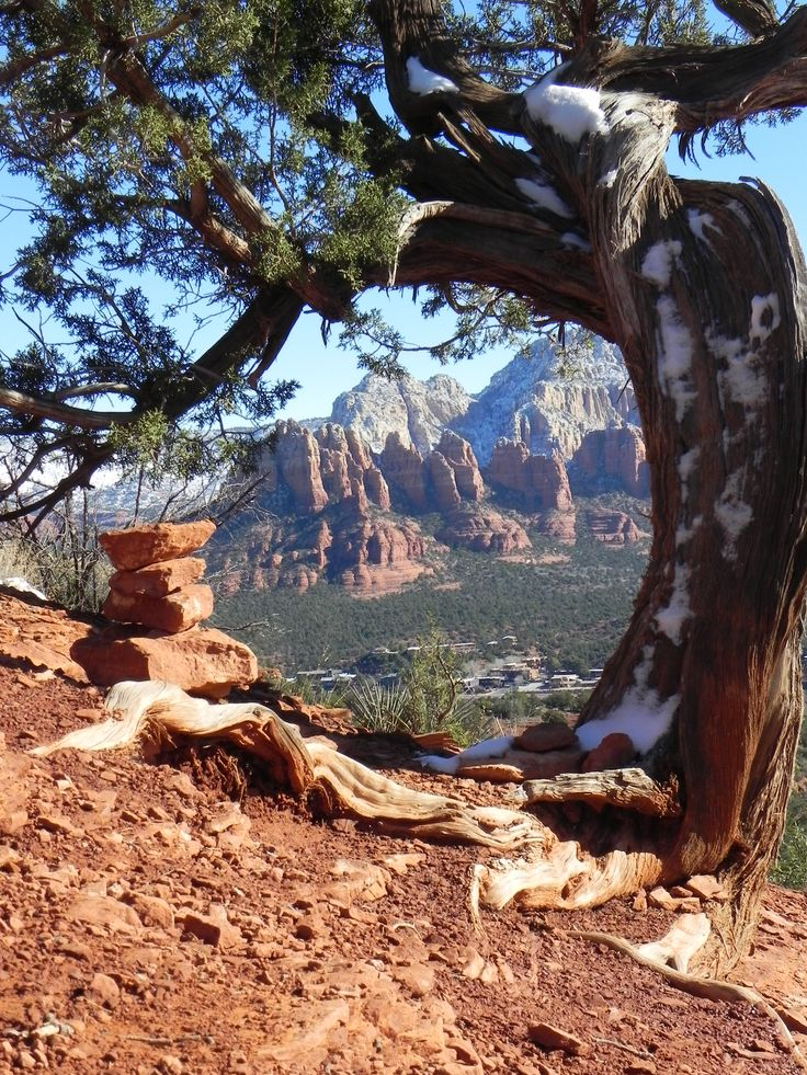 Sedona has 4 main Vortex sites. We provide info, directions & Google maps to Sedona Vortexes including Airport Mesa Vortex, Bell Rock Vortex, Cathedral Rock Vortex & Boynton Canyon Vortex.