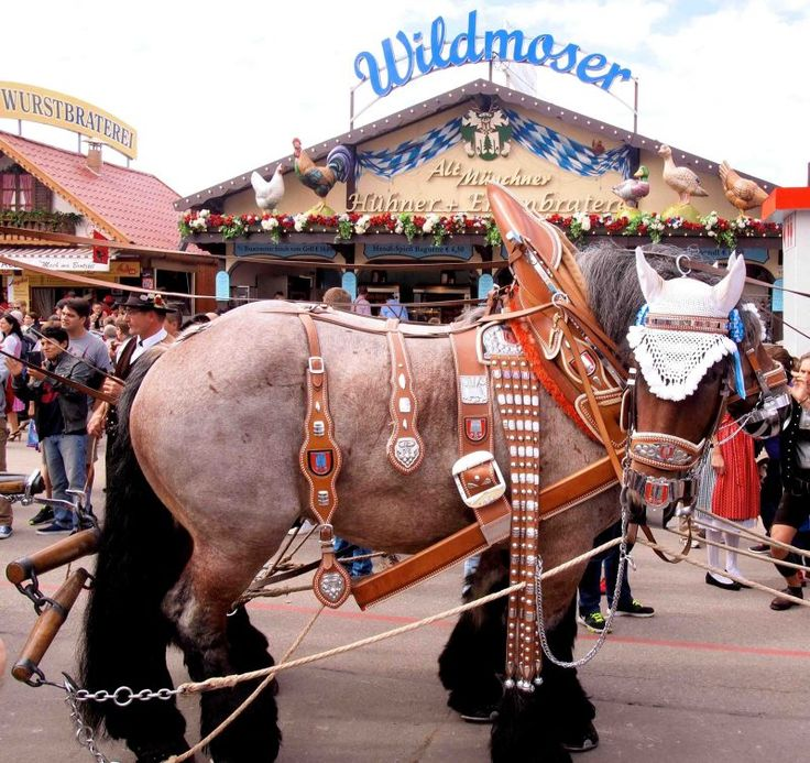 10 Surprising facts about the Munich Oktoberfest for first timers