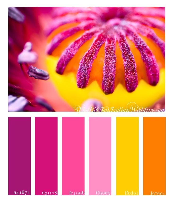 I feel like summertime is all about those bright pinks, stunning oranges, and golden yellows.  This poppy box palette will make everyone at your wedding smile, even if some grumpy, disapproving family member.  How can one not be happy with joy with these bright wedding colors!    In hues of dark and bright pinks, with a dash of purple, gold, and  [...]