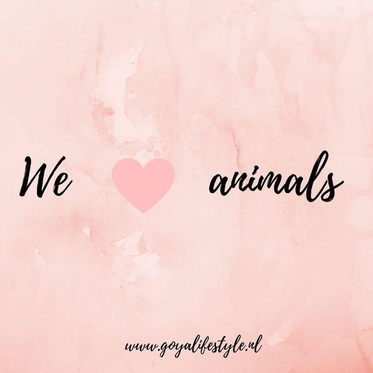 Het is vandaag Dierendag! De dag waarop we extra aandacht besteden aan onze lieve huisdiertjes. Hoe zet jij jouw huisdier in het zonnetje?