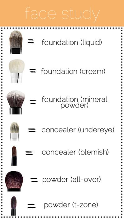 """Beauty can be hard to do. Not sure which brush is for what? Check out this easy """"Face Study"""" diagram to simplify picking out which brush goes best."""
