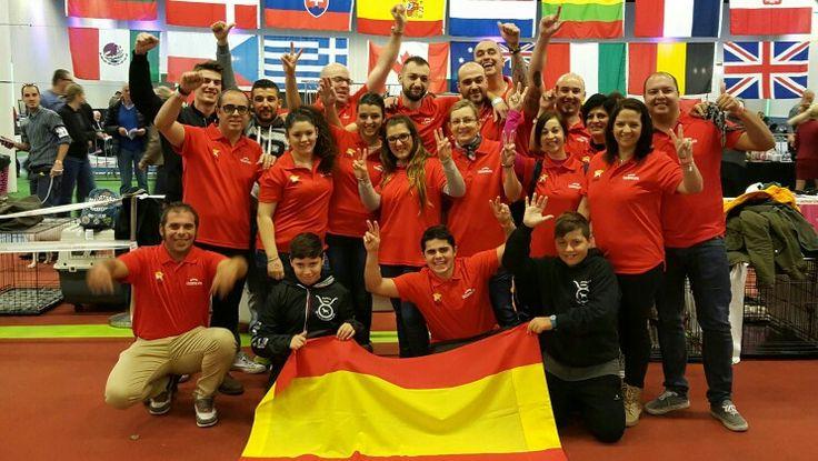 Equipo español Club del Bull  Terrier #Holanda