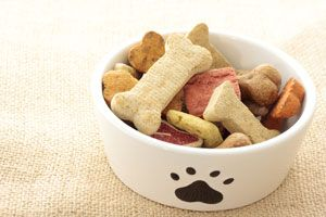Recipe ideas for quick and healthy homemade dog treats | Cesar Millan
