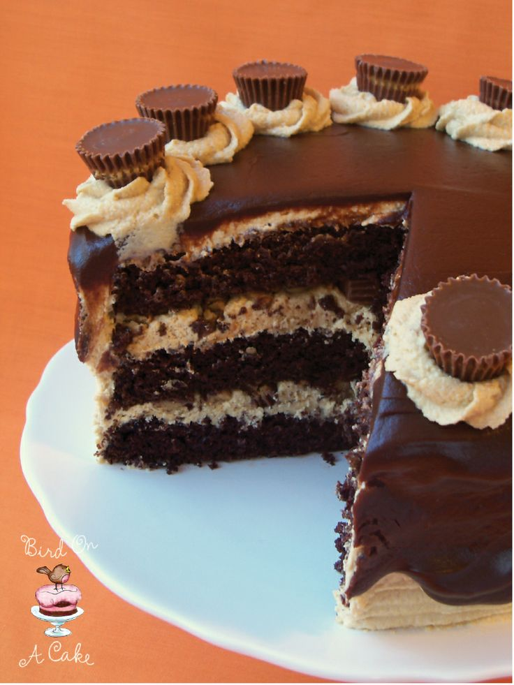 Bird On A Cake: Reese's Peanut Butter Chocolate Cake - think I just found cake for Aidan's 13th birthday!!!