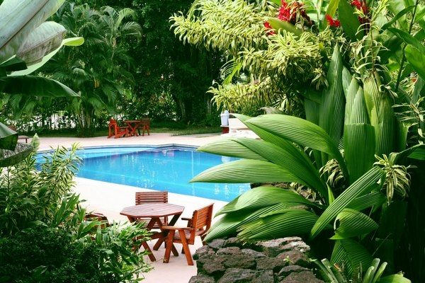 Outdoor lighting is another major element of the landscaping which can help you create a fantastic tropical atmosphere for your evening gatherings by the pool. String lights are very festive and can be used above the dining furniture. Ground lights installed in the thickets of plants, will create a romantic mood and make the site look like a fairy tale. Path lights and lights around the pool are essential for the convenience of walking around. Accent lighting in different colors will add to…