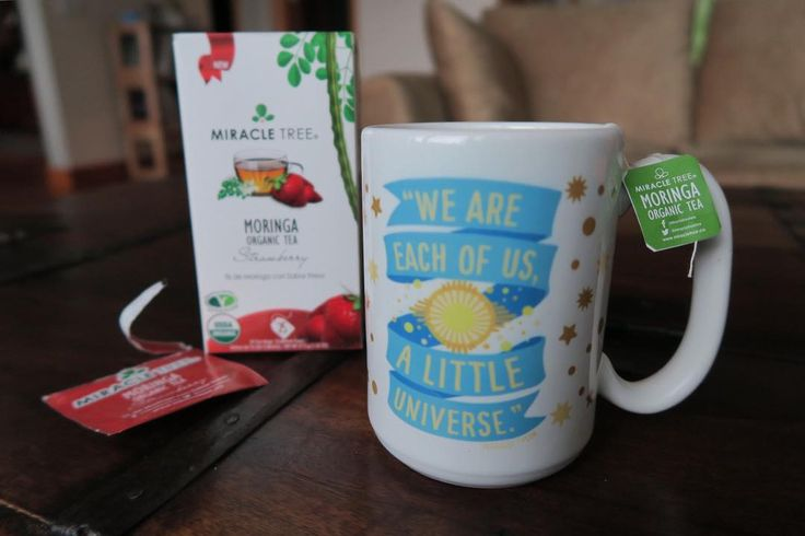 I'm starting off my day with some yummy moringa tea by @miracletreetea. It's #organic caffeine-free #nongmo and it's chock-full of antioxidants vitamins and amino acids. There have 10 different flavors but strawberry is definitely my jam (pun intended).  #moringa#miracletree#superfood#healthyfood#organictea#sponsored