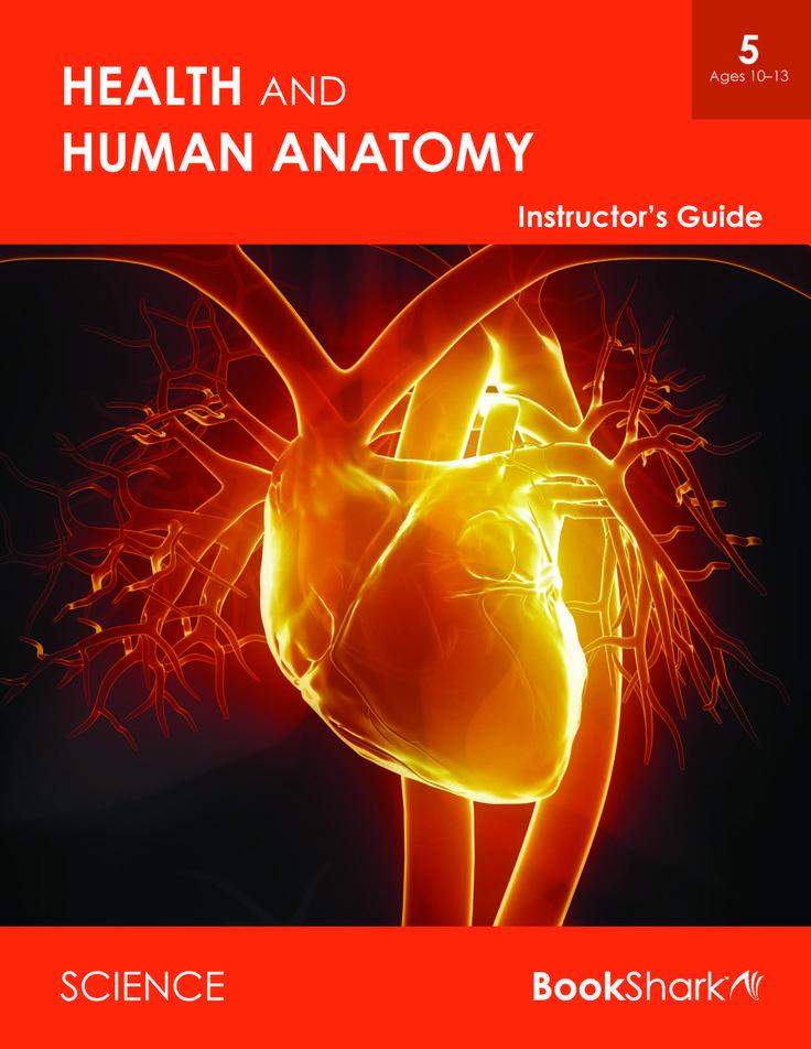 Berühmt Anatomie Und Physiologie Lehrplan Fotos - Anatomie Von ...