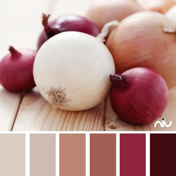 Onions (food & drink)