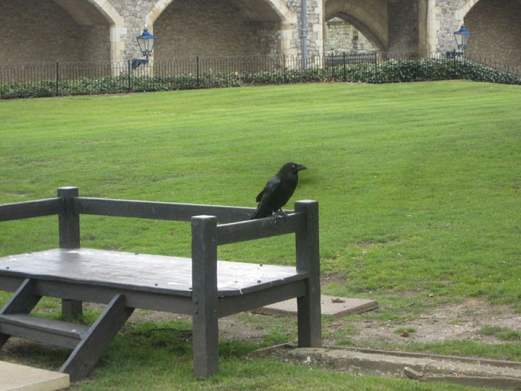 31.3.2013 The Tower of London