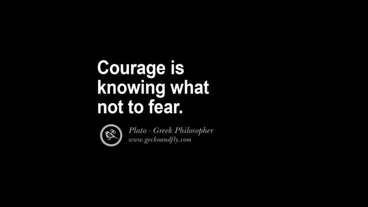 Courage is knowing what not to fear. - Plato Famous Philosophy Quotes by Plato on Love, Politics, Knowledge and Power