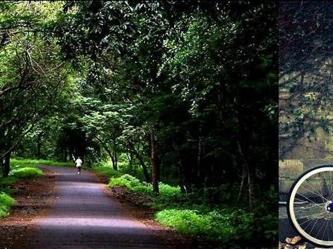 Cycling At Sanjay Gandhi National Park, Mumbai, Maharashtra