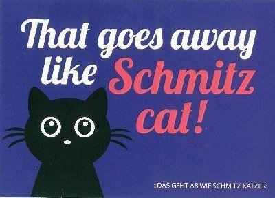 Postkarte Forbetter your English 048b Schmitz cat