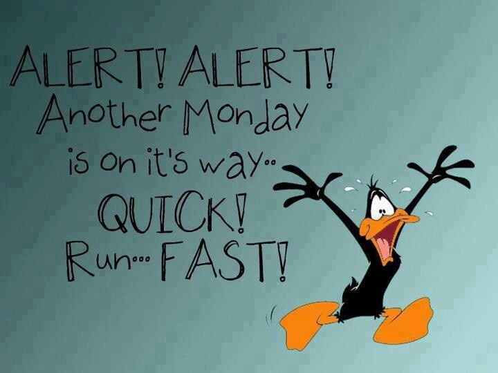 Run ... Monday is coming!