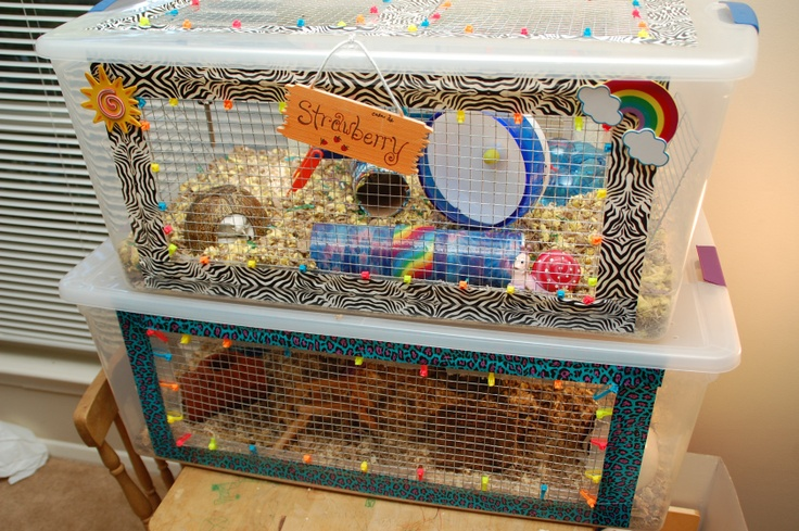 Diy hamster cage bin cage hamsters hamster cages and for Plastic bin guinea pig cage