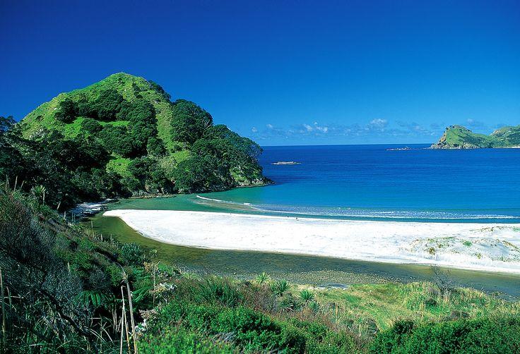 Medlands Beach, Great Barrier