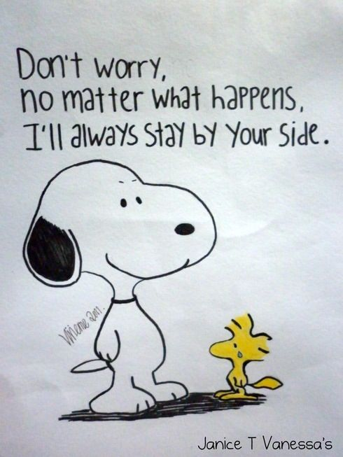 Snoopy Quotes 113 Best Peanuts Quotes Images On Pinterest  A Quotes All Is Well .