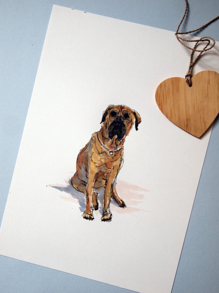 Personalised Pet Illustration -available now at www.homemadehouse.co.uk