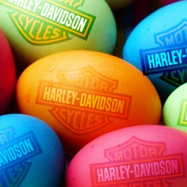 Don't want to wait until Sunday to find out what the Easter Bunny brought? Visit any of our 3 Orlando Harley-Davidson® dealerships this Saturday to see if he's left anything for you and enter for a chance to win a free Harley-Davidson jacket. #orlandoharley #harleydavidson
