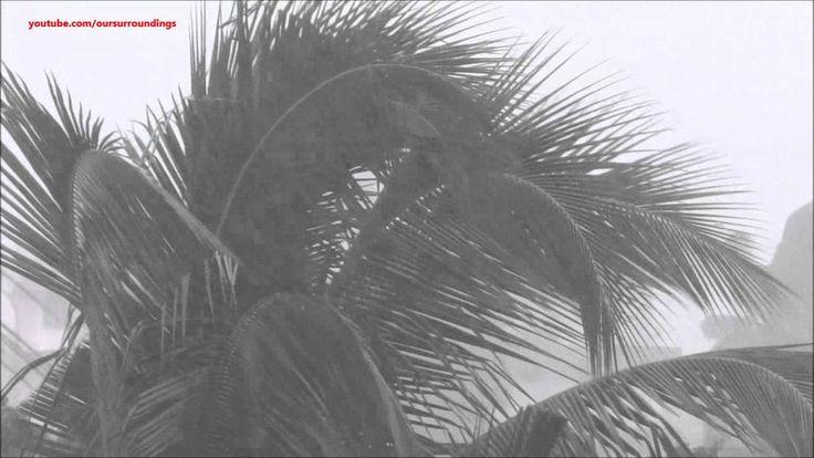 Fall Asleep to listening to: Heavy Rain Wind Thunder Video - 10 hour rain storm / thunderstorm sounds
